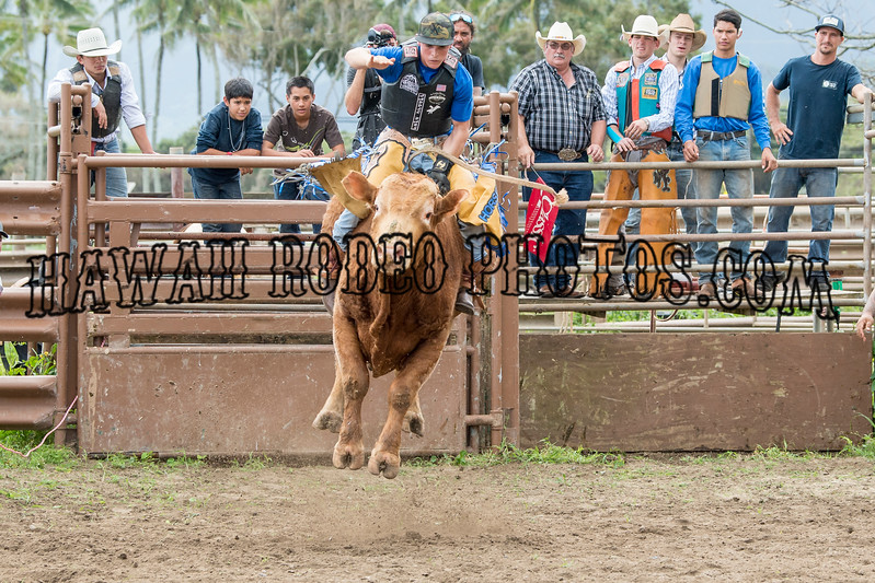 SURFERS AND BULL RIDERS