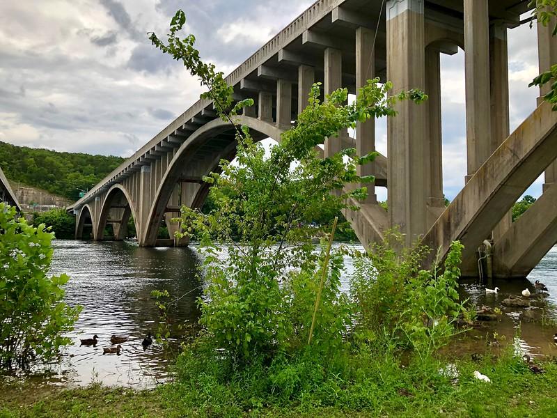 Lake Taneycomo Bridge (2020)
