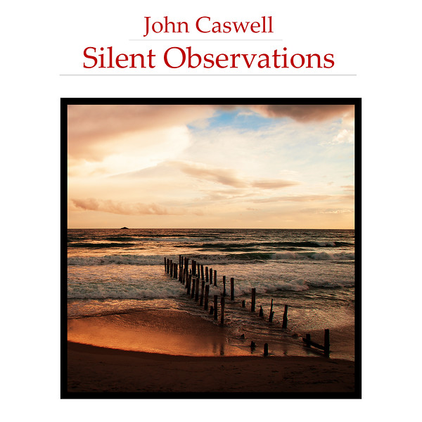 Silent Observations Square Cover Image.jpg