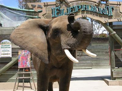 Mailika the Elephant