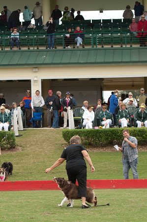 2013 THE VILLAGES POLO