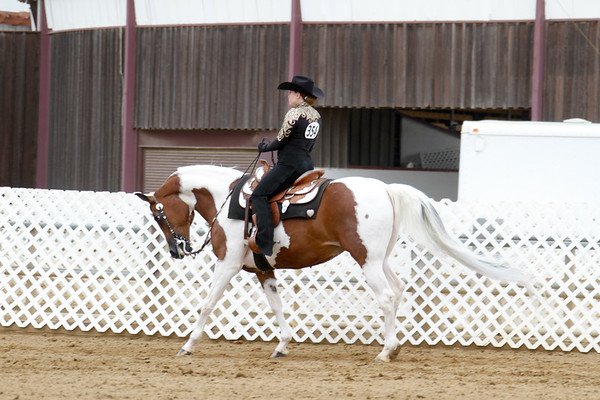 Horsemanship Championship