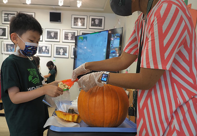 Grade 1 & 2 pumpkin project
