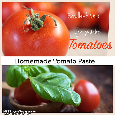 Homemade Tomato Paste I NikkiLynnDesign