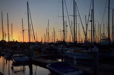 Vagabond Dock Pics 2018 Season