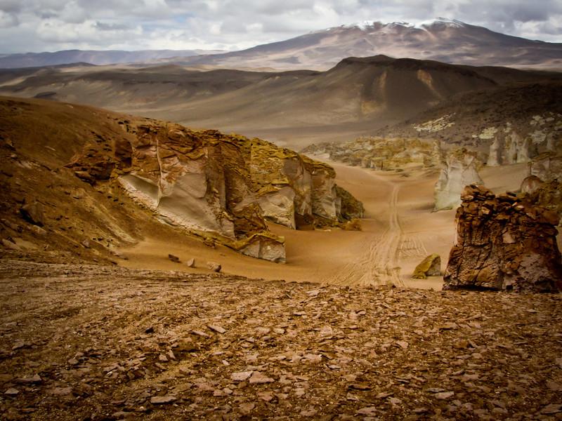 Atacama 201202 Salar de Tara (157b).jpg