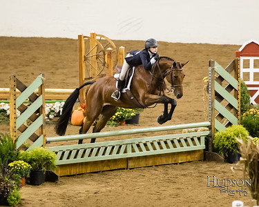 43 Low Equit Over Fences