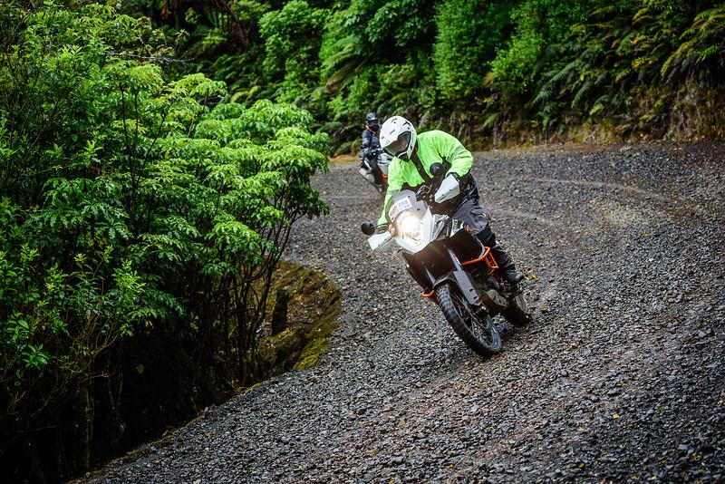 2018 KTM New Zealand Adventure Rallye - Northland (129).jpg