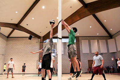 2017 Volleyball Fellowship