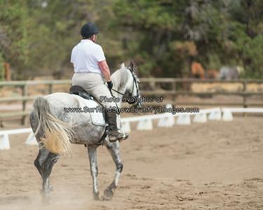 Sue Rodich--Horse Show