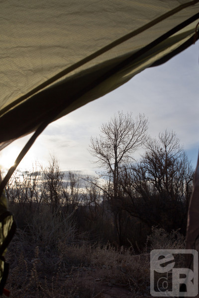 View from my tent