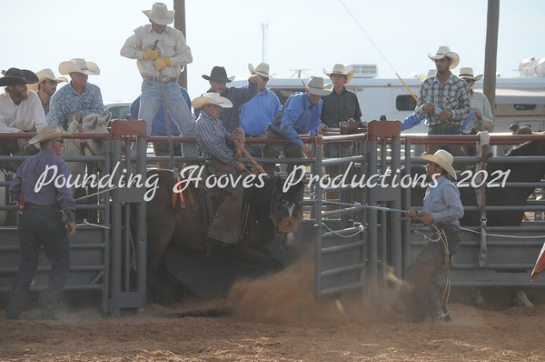 Ranch Bronc