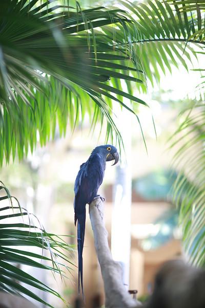 Kauai_D5_AM 238.jpg
