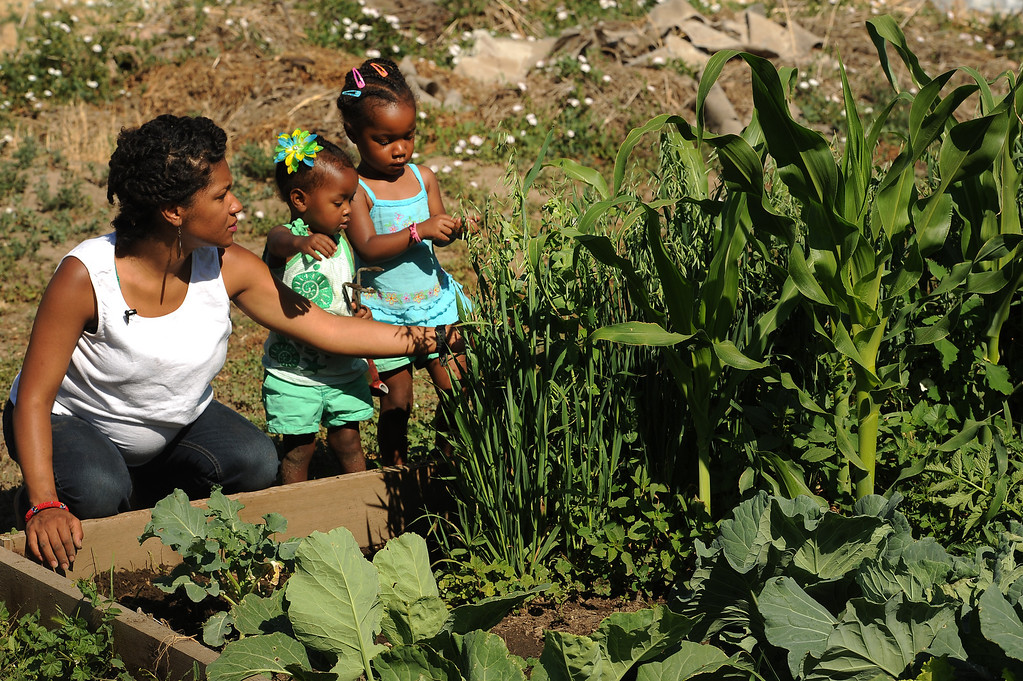 ". DENVER, CO - JULY 3:  Neambe Leadon Vita,left, and her two young children Selasia, 3, in blue, at far right, and Libya, 21 months, in green,  tend to their gardens at 33rd and Elm street in Denver, CO. on July 3, 2013.  Neambe and her husband Ietef Vita, not shown, try to grow as much food as possible as part of their vegan and healthy diet.   As part of our ""Summer of Love\"" series for the Style section we profile the relationship of DJ Cavem Moetavation (a.k.a. Ietef Vita) and his wife Neambe Vita.  They are proud and longtime Five Points residents. They\'re artists, community activists, musicians, teachers and more.  They espouse the idea of being vegan or vegetarian and promote eating healthfully and organically.  (Photo by Helen H. Richardson/The Denver Post)"