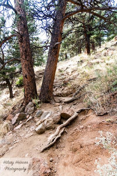 Colorado-384.jpg