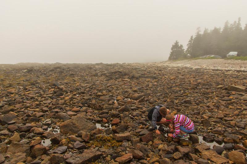 Foggy-beach-grace-elijah.jpg