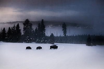 The West: Wyoming, South Dakota and Montana