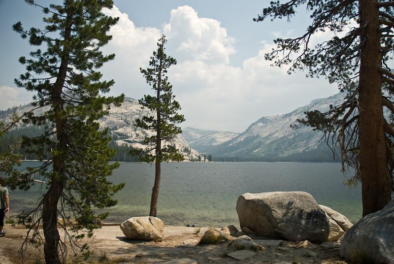 Yosemite_15_(DSC_4034).jpg