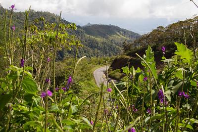 Costa Rica - Talamanca Mountains