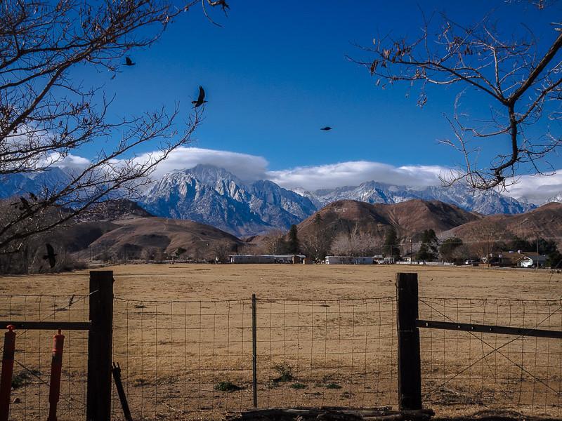 December 31 - Mt. Whitney_ California-1.jpg