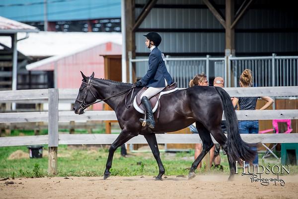 62 Classic HUS Horses Sr