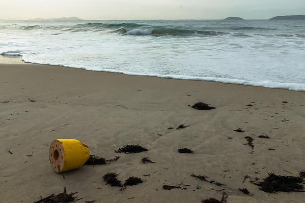 Defiled Beaches.