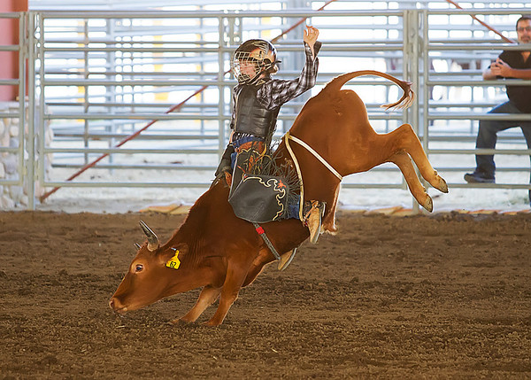 2013 Norco Horseweek - Junior Bull Riding