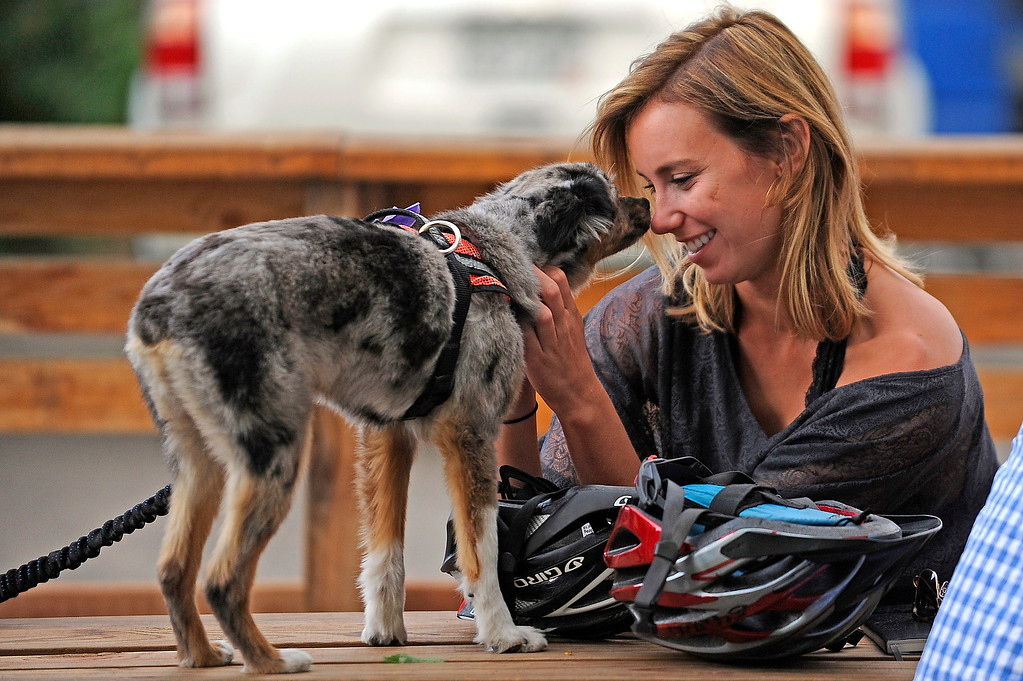 . Heidi Hollingsworth touches noses with Addie, an Australian cattle dog, on the patio at Our Mutual Friend on June 14, 2013 in Denver, Colorado. Our Mutual Friend is brewery and tap room located in five points. (Photo by Seth McConnell/The Denver Post)