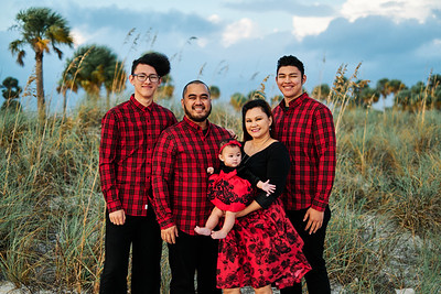Caroline Sanchez Family Portraits