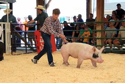Senior Swine Showmanship