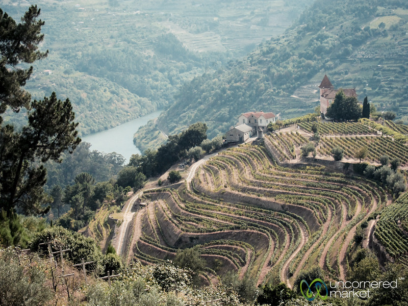 Douro Valley Village, Vineyards and Hills - Portugal