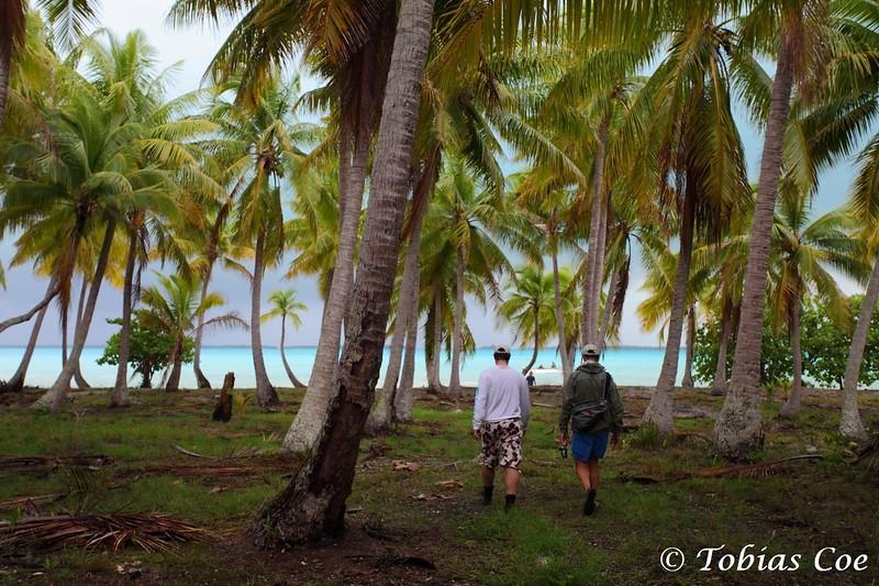 Tahiti (Anaa) (18).JPG