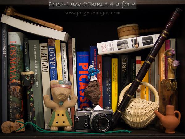 Leica DG Summilux 25mm f1.4-Review