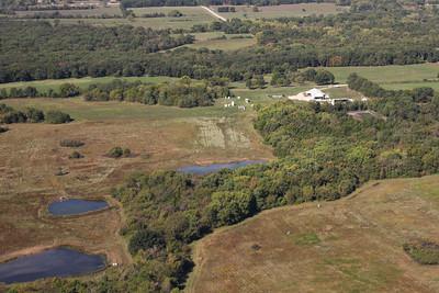 Brushy Creek Farm