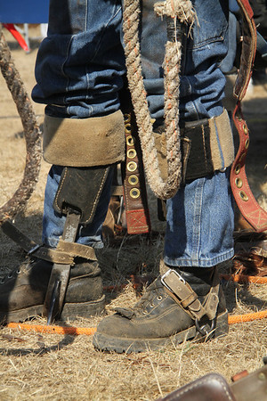 Logging Show Pole Climb