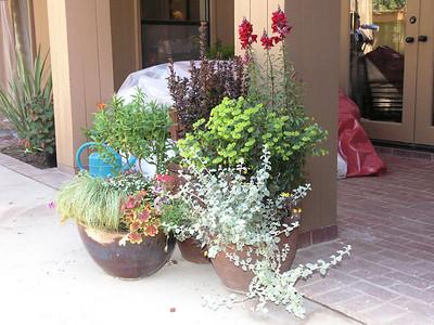 The Garden Tutors