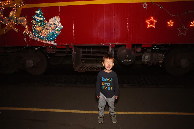 2018-Train-of-lights-0032.jpg