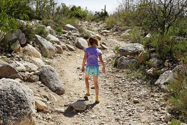 2009 Pima Canyon Trail