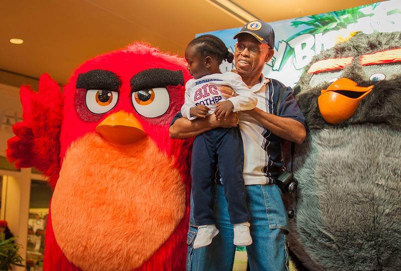 Angry Birds StoneCrest Mall 156.jpg