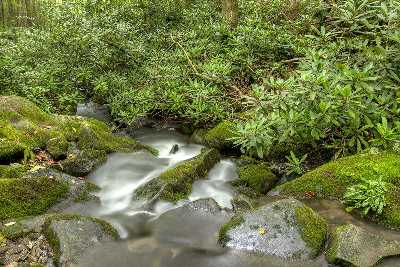 A meandering creek that runs alongside a portion of the Roaring Fork Motor Nature Trail at the Great Smoky Mountains National Park in Gatlinburg, TN on Sunday, August 4, 2013. Copyright 2013 Jason Barnette