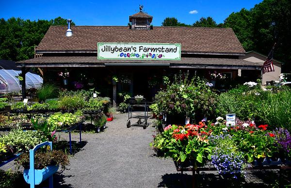 6/27/2019 MIke Orazzi | Staff Jillybean's Farmstand on Route 6 in Farmington.