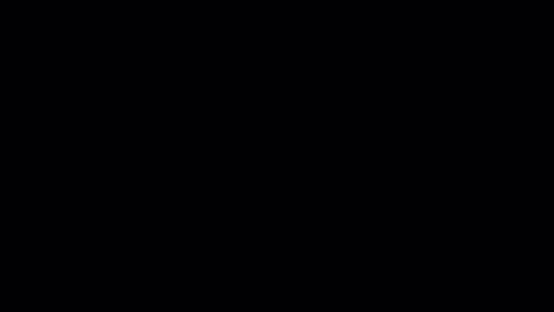 Pixel Cam v2