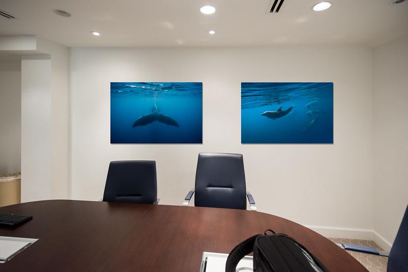 BoardroomMockup2Horiz08.jpg