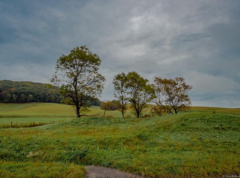 38 Oct WV Landscape (1 of 1).jpg
