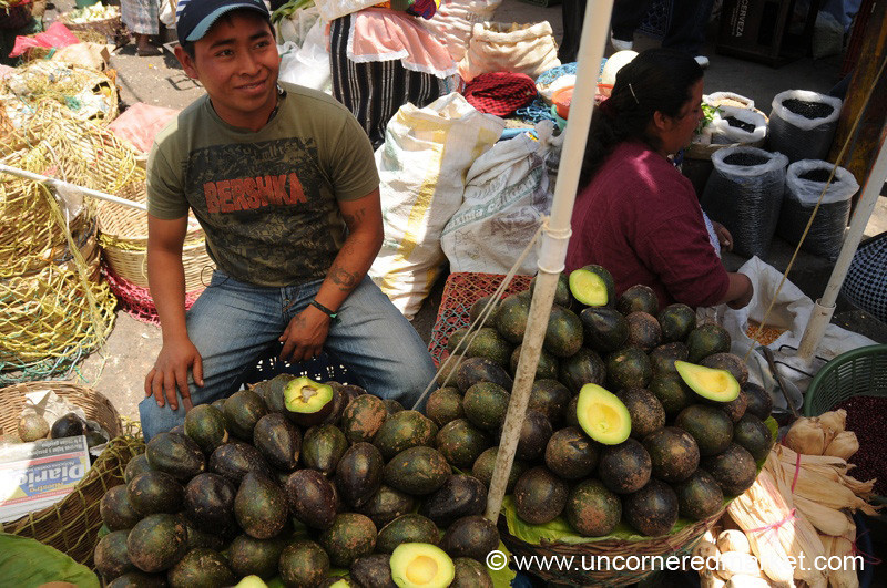 Green Avocados at Market - Xela, Guatemala