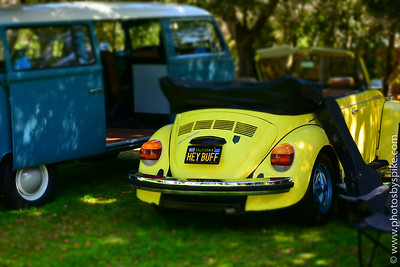 Central Coast Vintage VW Club