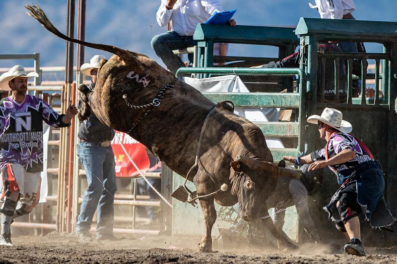 2019 Rodeo 5 (456 of 574).jpg
