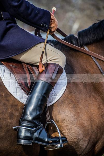 Horse & Rider 2
