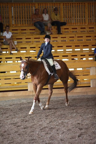 Small Fry Hunter Under Saddle & Equitation