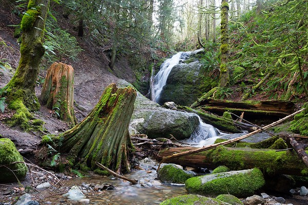 Coal Creek Falls Hike - February 28, 2020